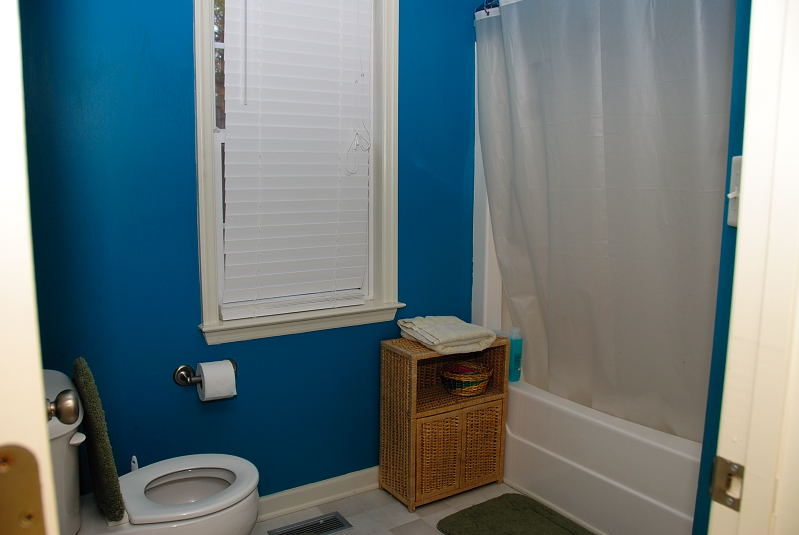 Goldsboro NC - Homes for Rent - Master Bathroom - 103 Karrie Ann Place Pikeville NC 27863